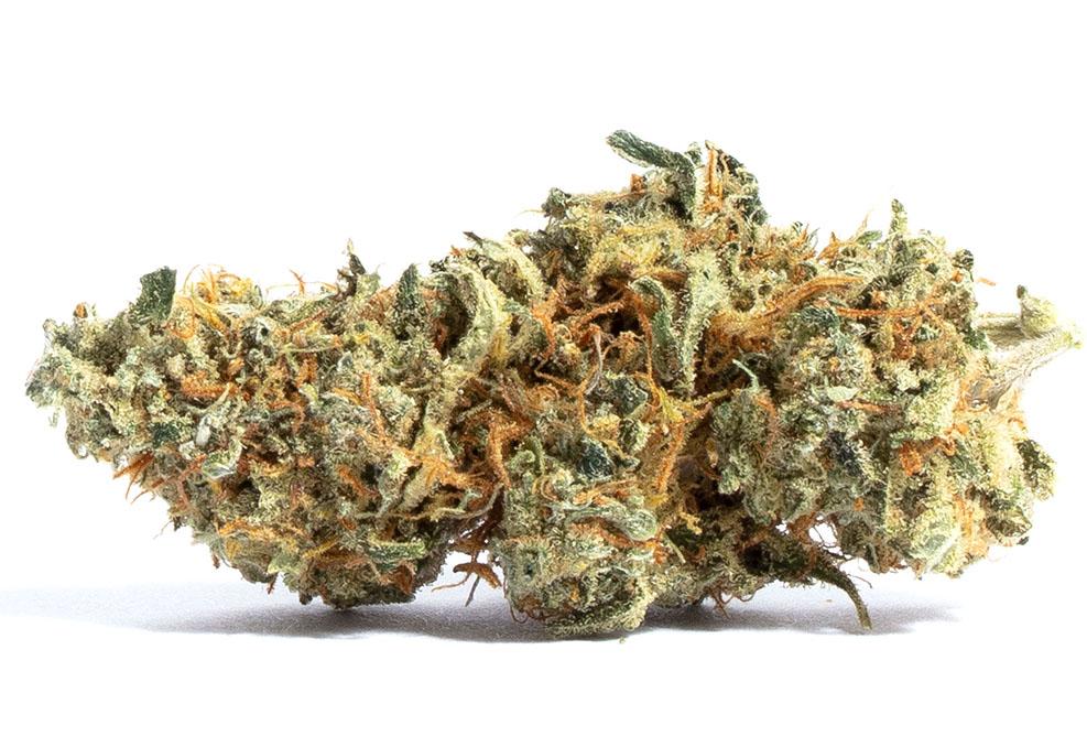 Amnesia Marijuana Strain
