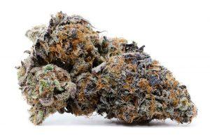 10th Planet Cannabis Strain
