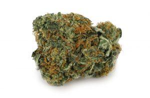 Alien Kush Marijuana Strain