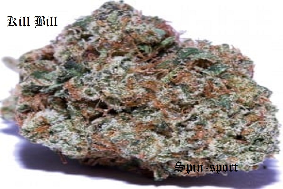 Kill Bill Marijuana Strain Information