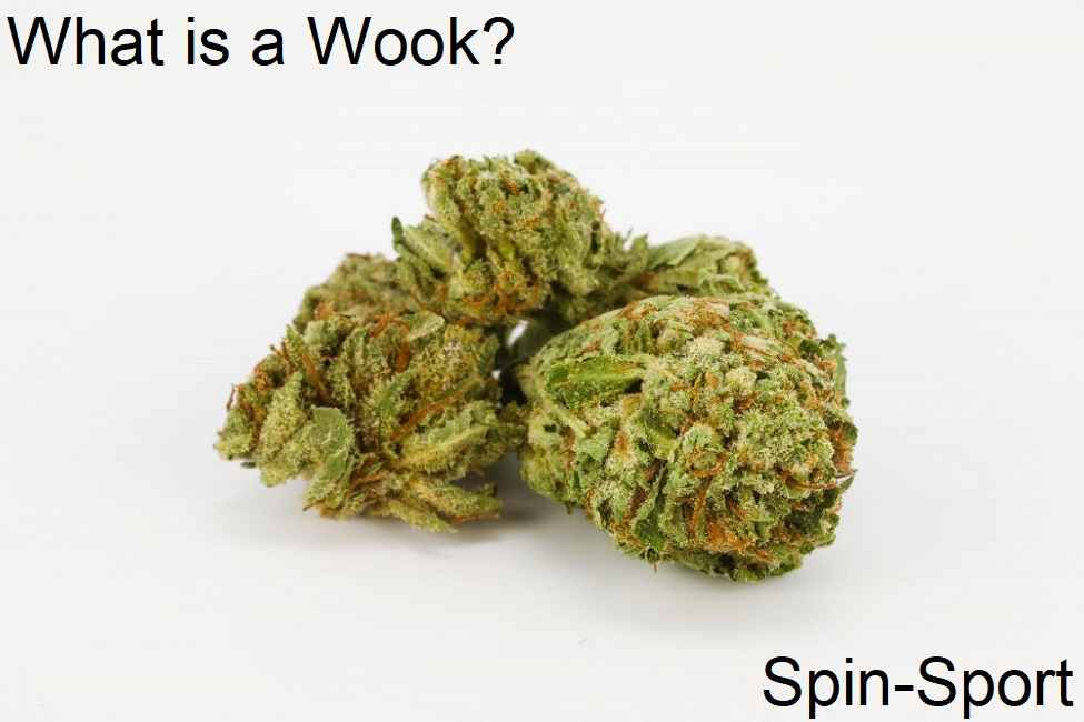 What is a Wook?
