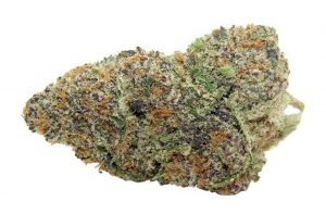 What is Ice Cream Cannabis Strain?