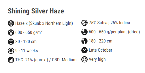 haze meaning