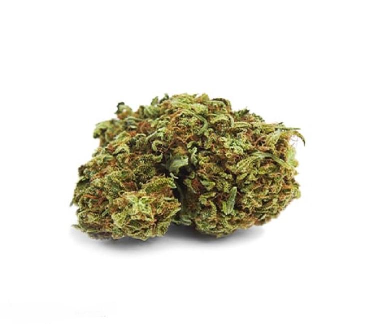 Grape Soda Marijuana Strain Information