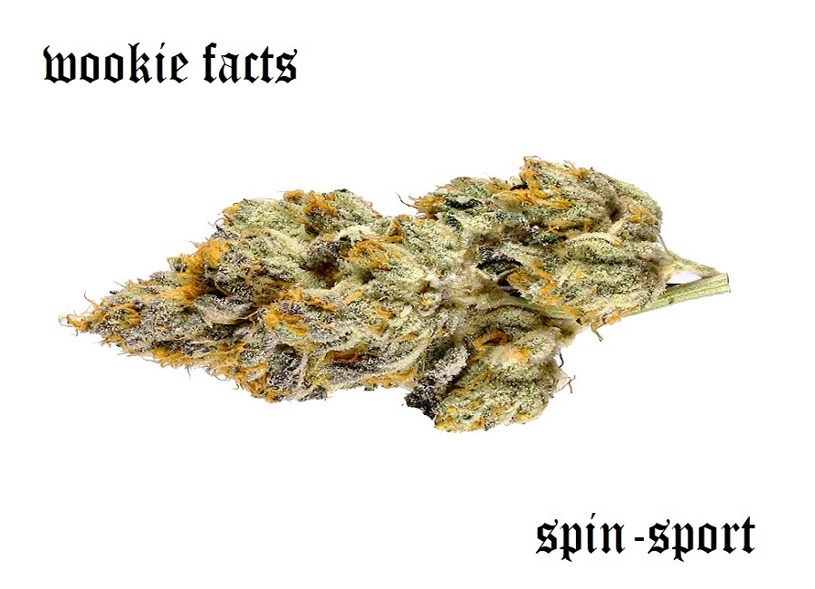 Wookie Marijuana Strain Information
