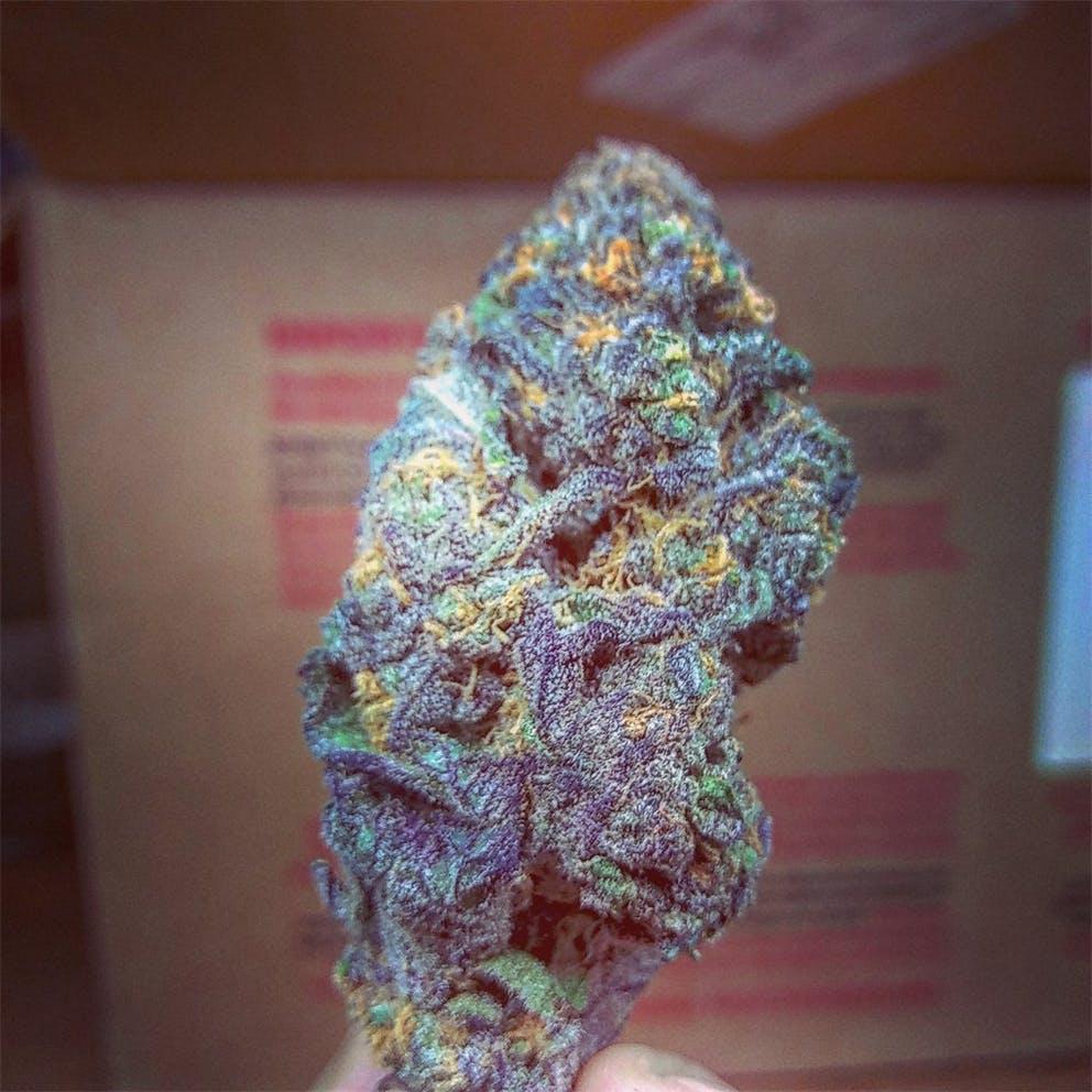 XXX OG Weed Strain