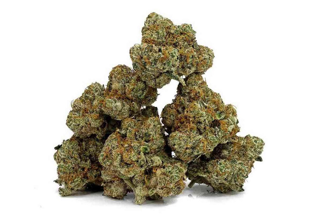 Zookies Cannabis Strain
