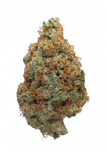 Hawaiian Punch Strain Information