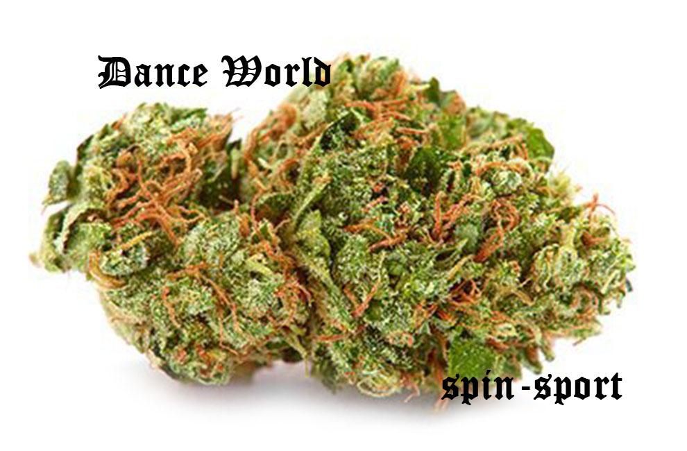 Dance World Marijuana Strain