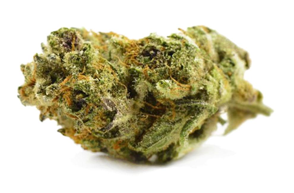 Jamba Juice Marijuana Strain