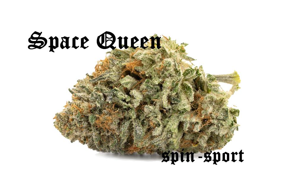 Space Queen Marijuana Strain
