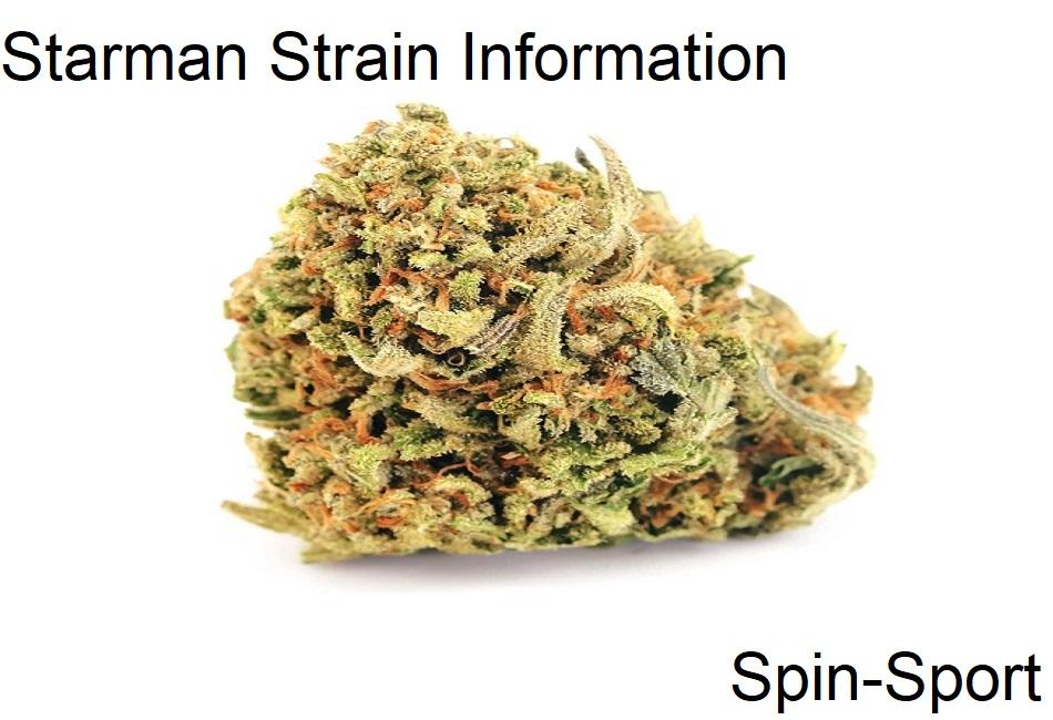 Starman Strain Information