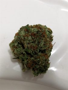 Velvet Bud Marijuana Strain Information