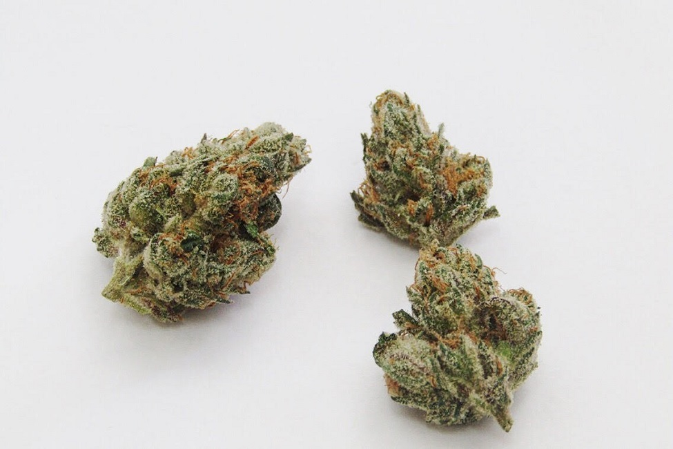 Smooth Operator Strain Information