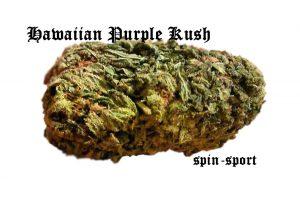 Hawaiian Purple Kush Marijuana Strain