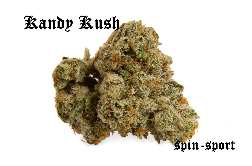 Kandy Kush Marijuana Strain
