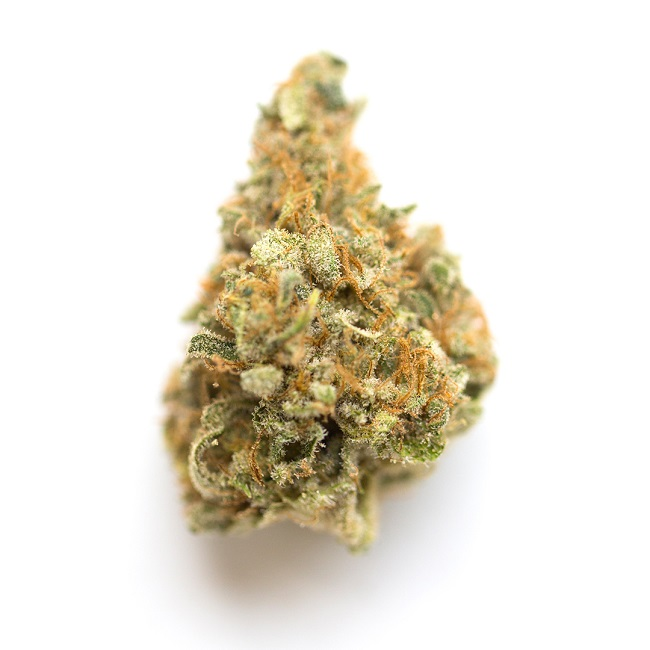 Mango Marijuana Strain Information