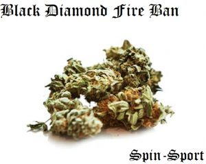 Black Diamond Fire Ban