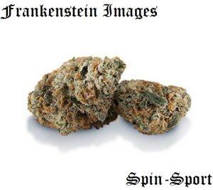 Frankenstein Images
