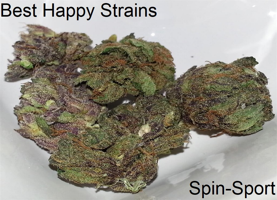 Best Happy Strains