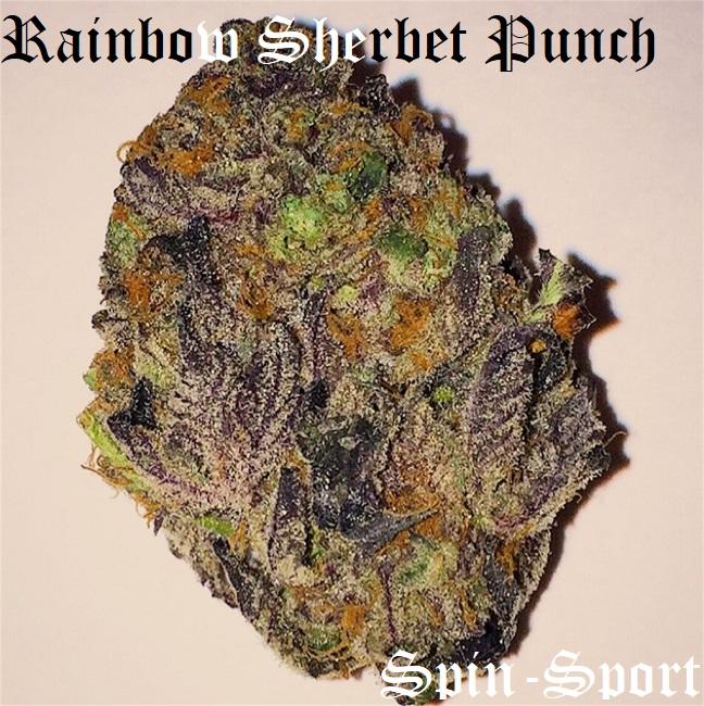 Rainbow Sherbet Punch