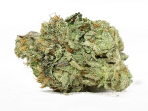 Snoop Dogg Strain Information