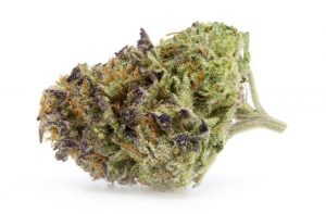 Voodoo Marijuana Strain