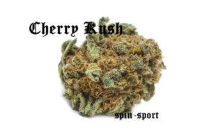 Cherry Kush Marijuana Strain
