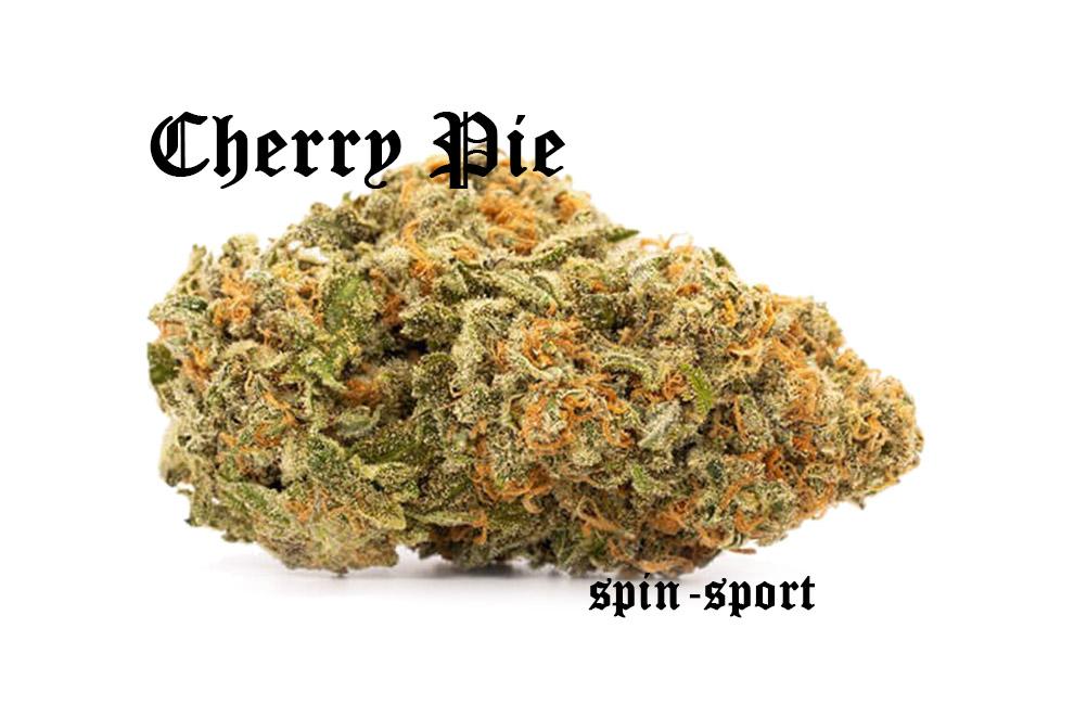 Cherry Pie Marijuana Strain