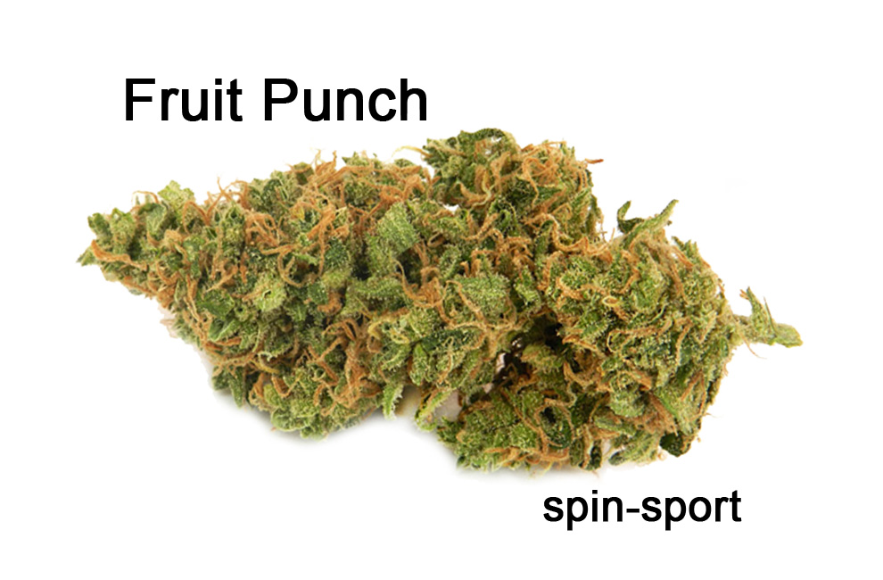 Fruit Punch Strain