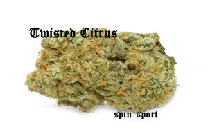 Twisted Citrus Marijuana Strain