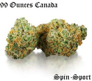 99 Ounces Canada