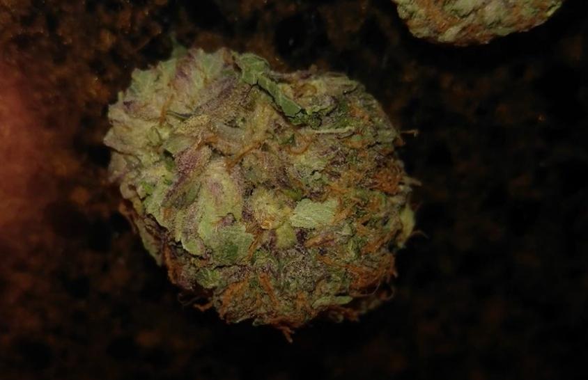 purple kush leafly