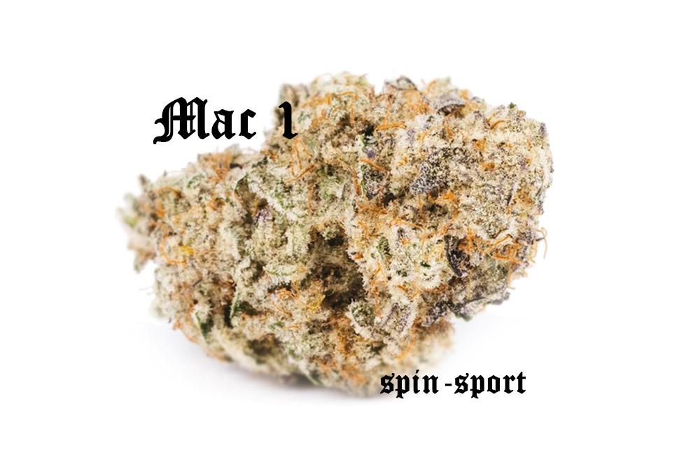 Mac 1 Marijuana Strain