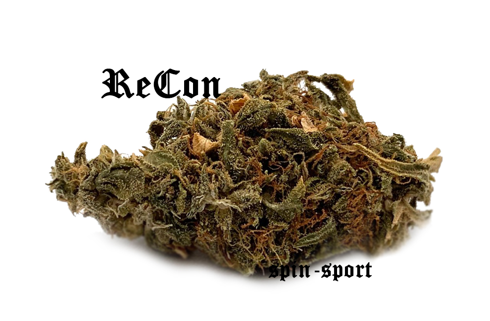 Recon Marijuana Strain